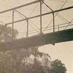 Book Review: Hanging Bridge: Racial Violence and America's Civil Rights Century by  Jason Morgan Ward
