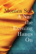 "cover of ""A Nail the Evening Hangs On"""