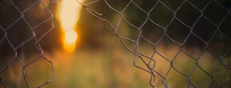 a wire fence with a hole torn in it, beyond a field, some trees and a setting sun
